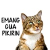 Stiker Kucing Lucu Moji