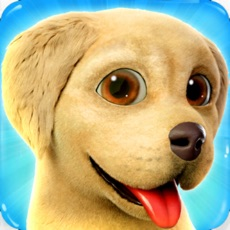 Activities of Dog Town: Pet Simulation Game