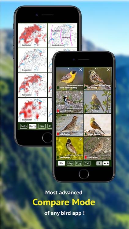 All birds CH - photo guide screenshot-6