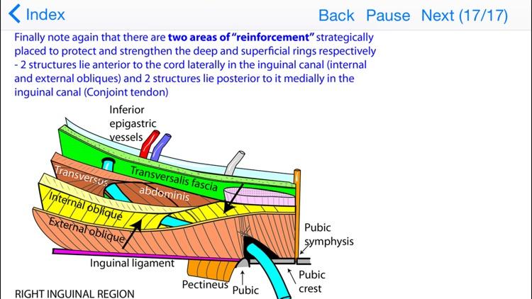 Anatomy Topics in Focus screenshot-4