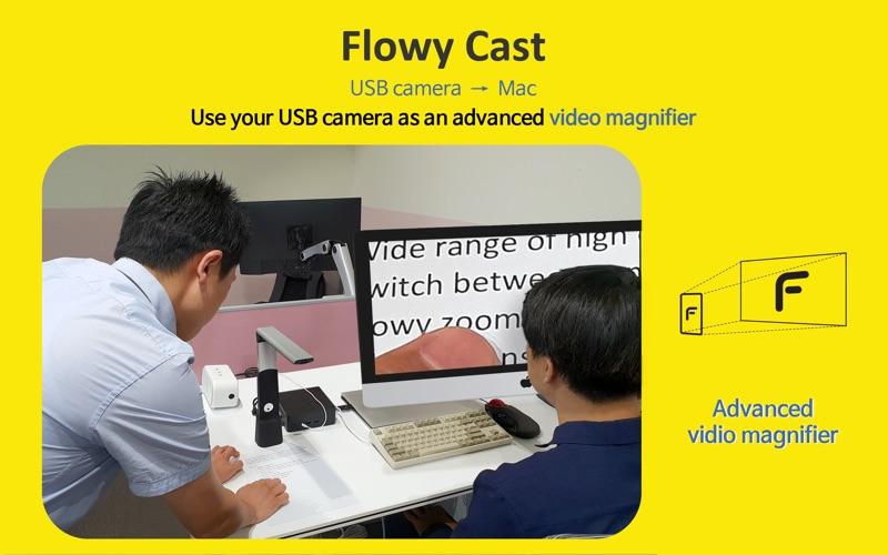 Flowy скриншот программы 3