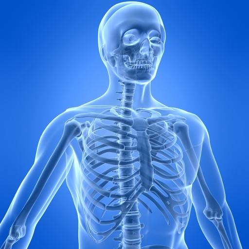 Learn Skeletal System