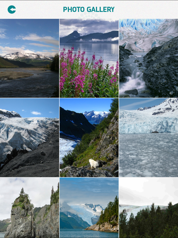 Kenai Fjords National Park screenshot 9