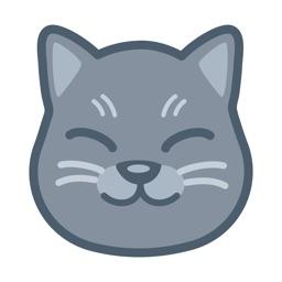 Curious Cat: Money for Surveys