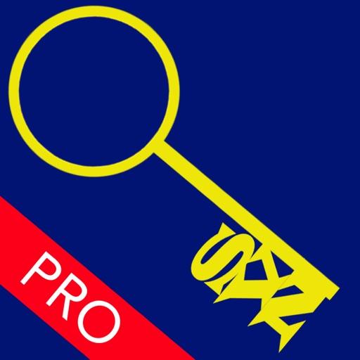 SVN Repo Browser Pro