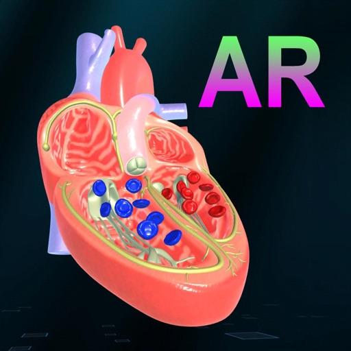 AR Heart - An incredible pump