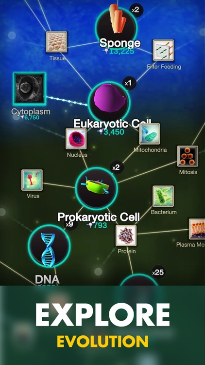 Cell to Singularity: Evolution