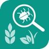 植物识别-AI智能识别花草虫鱼