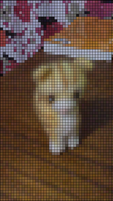 pixelizer screenshot1