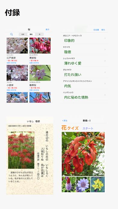 花しらべ 花認識/花検索 ScreenShot3