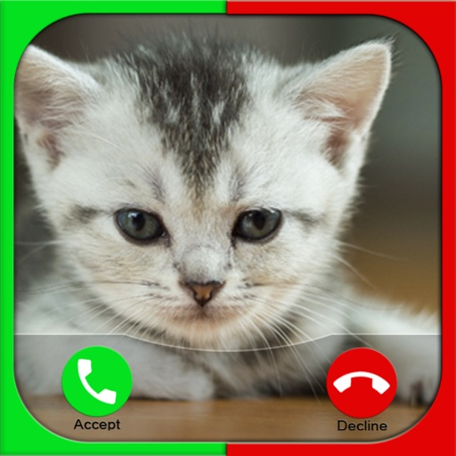 Cat Fake Call Prank For Kids iOS App