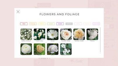 Bridal Bouquet Builder app image