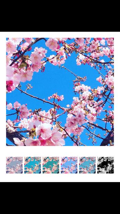 Filter Collage Maker screenshot 3