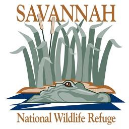 Savannah NWR Tour