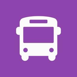 NYU Buses