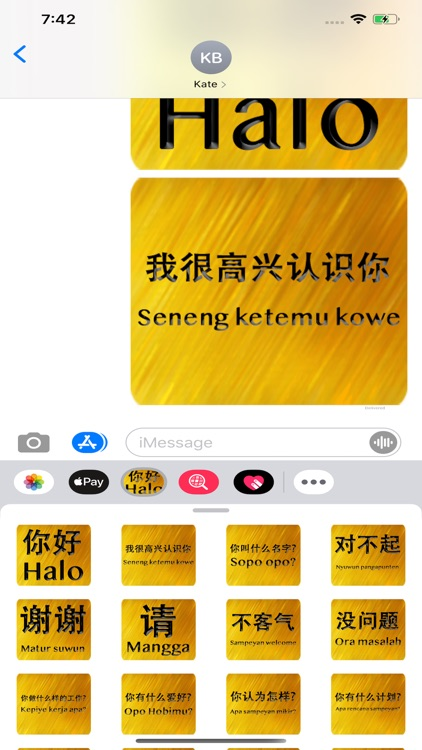 Chinese Javanese screenshot-3