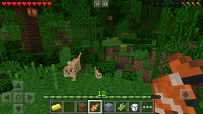 Minecraft – Pocket Edition Screenshot 1