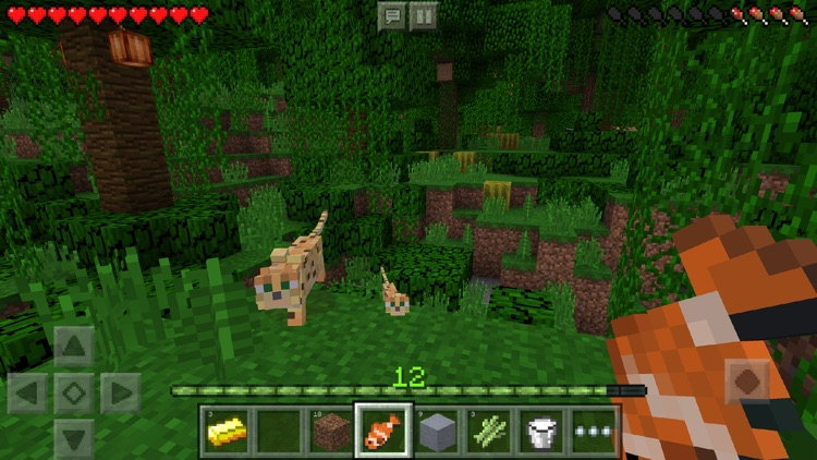 Minecraft screenshot-0