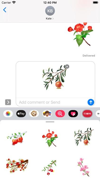 石榴转 screenshot-2