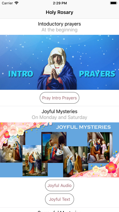 Holy Rosary With Audio & Text screenshot 1