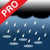 Wade Tucker - Rain Log Pro artwork