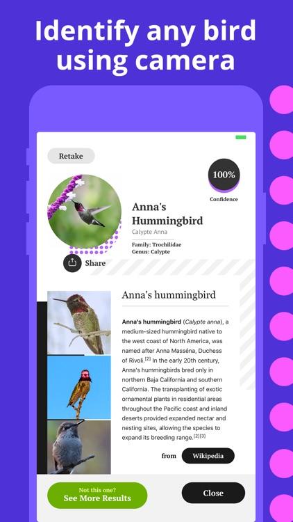 Bird Identification screenshot-1