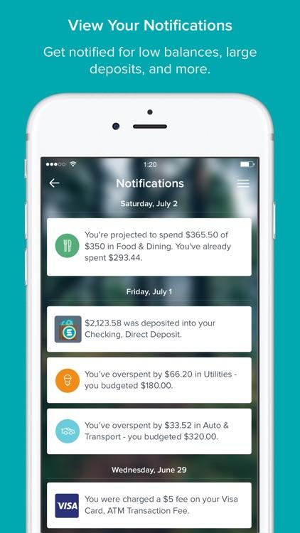 Service One Money Manager screenshot-5
