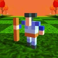 Player Flip - Jumping Battle