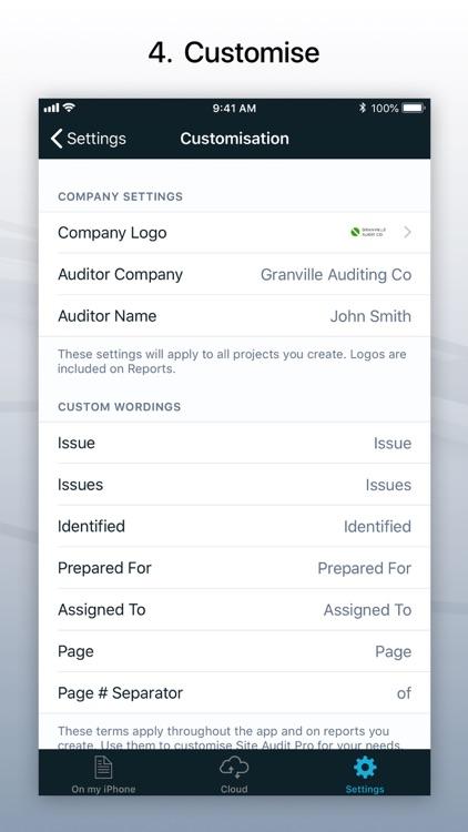 Site Audit Pro screenshot-3