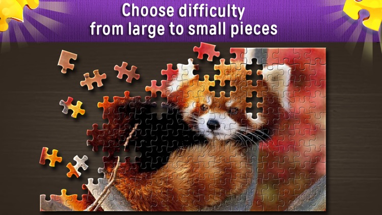 Jigsaw Puzzles World screenshot-0