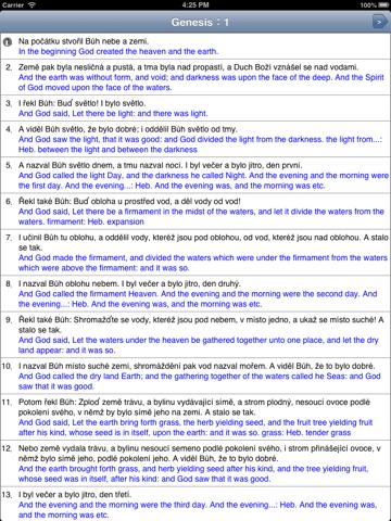 Čtení Bible - náhled