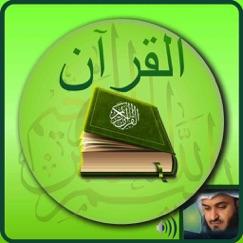 Offline Quran Audio Reader Pro ipuçları, hileleri ve kullanıcı yorumları