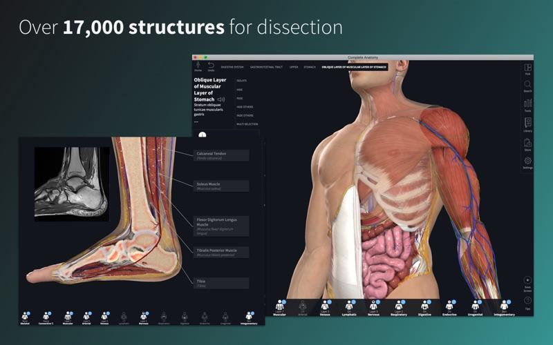 Complete Anatomy Platform 2020 Screenshot