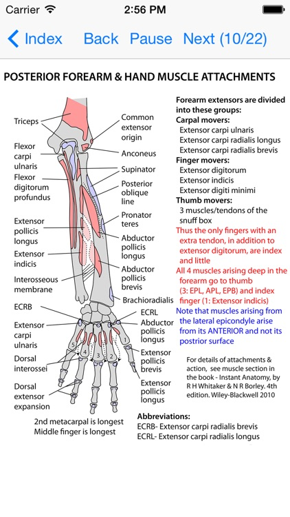 Anatomy Lectures and MCQs screenshot-3