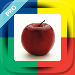 Language Builder® Pro