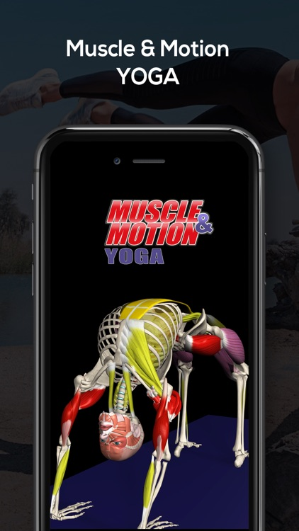 Yoga by Muscle & Motion