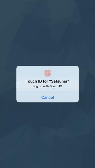 Satsuma Loans screenshot two