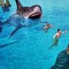 White Shark Attack In Sea