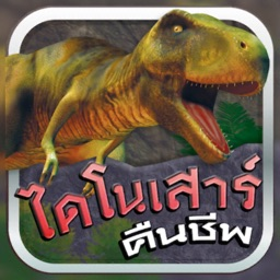 MIS Dino Card AR
