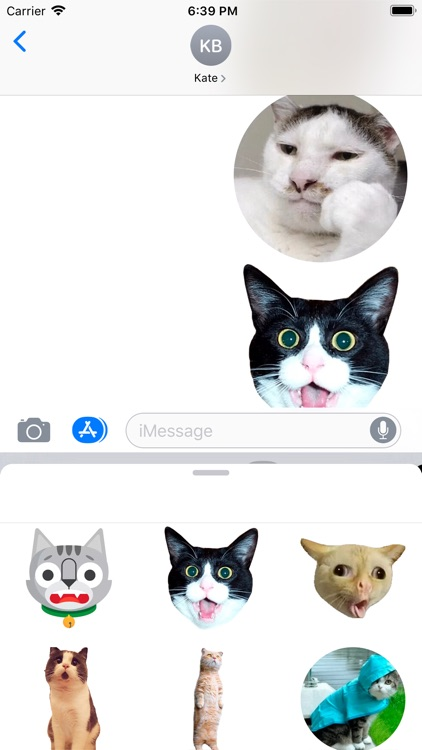 Funny Cat Stickers Animated