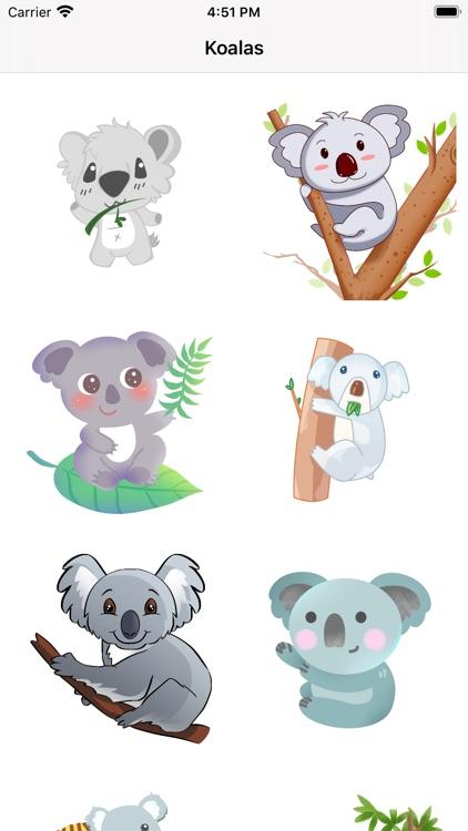 Cute Koala for IM