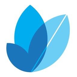 Proveca Dosing App