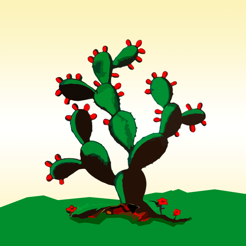 Loteria Cantamelas On The App Store