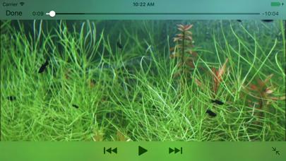 Aquarium Videosのおすすめ画像1