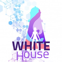 White House - CSS Color Game