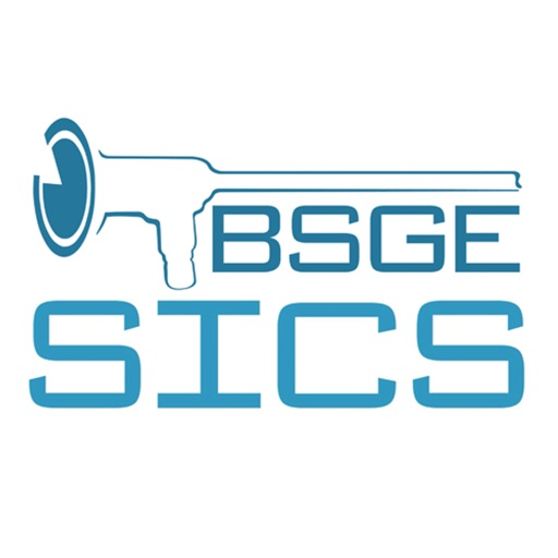 The BSGE Network
