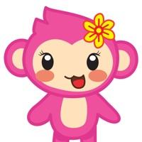 Nana Pink Monkey