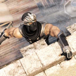 Shadow Ninja Assassin Game