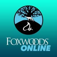 Codes for FoxwoodsONLINE Hack