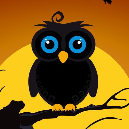 Funny owl face